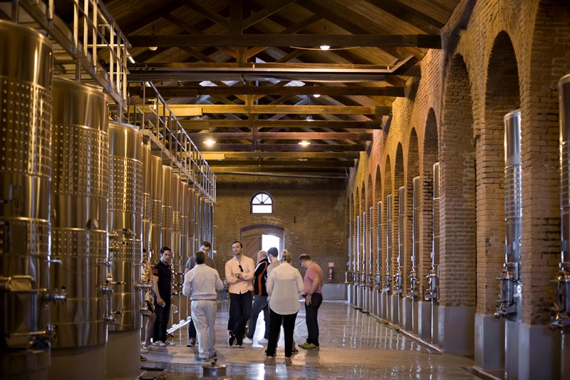 MDZ-wine-tours-Bodegas