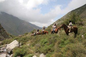 mdz-wine-tours-cabalgata